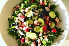 Insalata verde, cetrioli, rucola, ravanelli, mirtilli e semi di chia